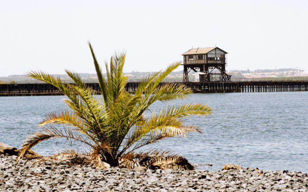 La Autoridad Portuaria de Huelva saca a licitación las obras del proyecto de rehabilitación del Muelle de Tharsis
